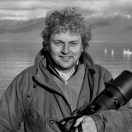 David Tipling - Wildlife Photographer