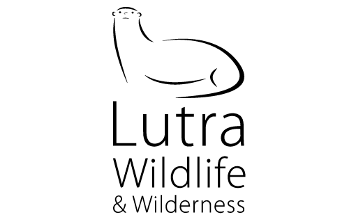 Lutra Wildlife and Wilderness